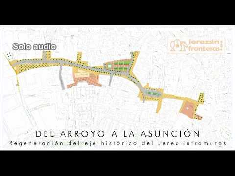 Sobre la peatonalización del eje Arroyo-Plaza de la Asunción-Plaza del Progreso en Jerez