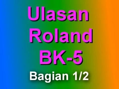 Ulasan Roland BK-5 bag 1/2