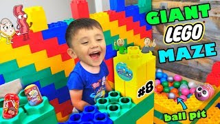 Shawn's Circle: GIANT LEGO MAZE w/ HUNT 4 HIDDEN BALDI'S BASICS & MORE TOYS (#8) | DOH MUCH FUN