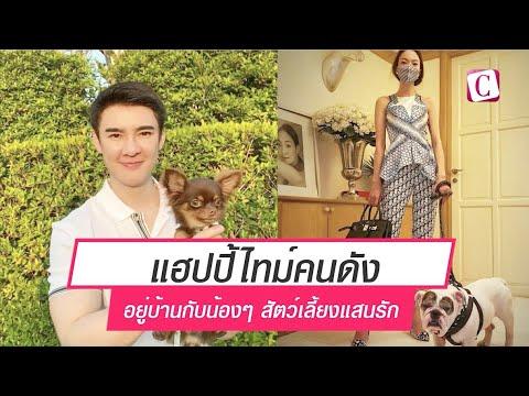 [Celeb Online] แฮปปี้ไทม์คนดังอยู่บ้านกับน้องๆ สัตว์เลี้ยงแสนรัก