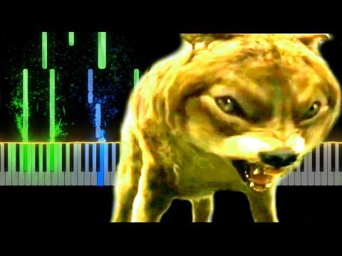 Цитаты волка на пианино Безумно можно быть первым HOMIE