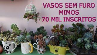 Cultivo de Suculentas em Vasos sem Furos – Vasinhos Fofos