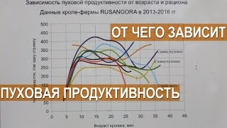 Лада Кирисенко. График зависимости пуховой продуктивности от возраста и рациона