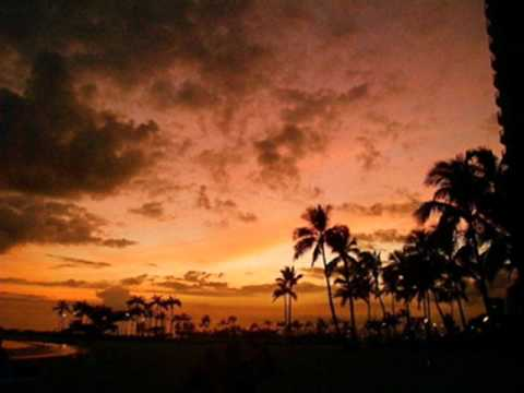 Steven & Coconut Treez - Sunset