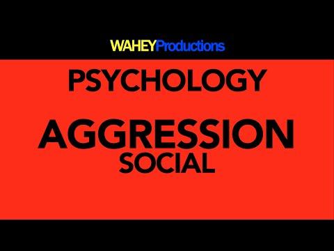 Social | Aggression | Psychology