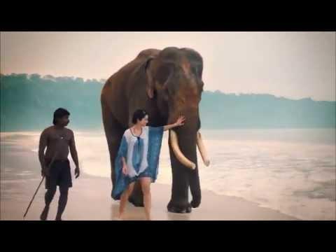 Incredible India Tourism