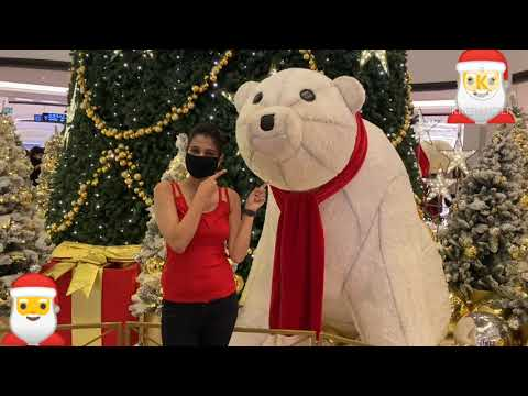 Christmas celebration in Dubai (Mall of the Emirates)