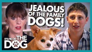 These Teens Feel LESS LOVED than their Family Pets | It's Me or The Dog