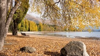 Wanaka things to do, tours and attractions - Must Do New Zealand