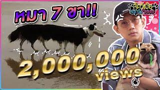 หมา 7 ขา!!!  : สัตว์เอ้ยสนุกจังโว้ย l VRZO