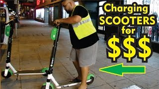 How much we made CHARGING LIME SCOOTERS in one day!