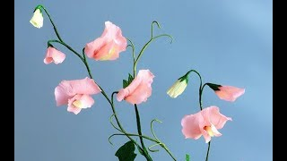 ABC TV | How To Make Sweet Pea Paper Flower From Crepe Paper - Craft Tutorial