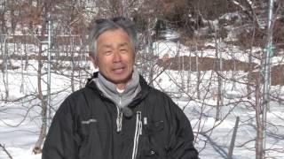 【ながの旬チャンネル】原田果樹園 原田章一さん - 長野市農業公社