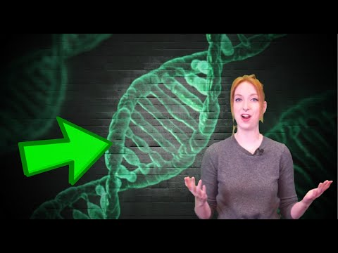 What Do Your Genes Say About You?