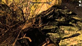 Skyrim #048 - Очистительная месть