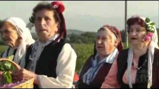 Slavi Trifonov _ Ku-Ku Bend - Bulgarska Roza.