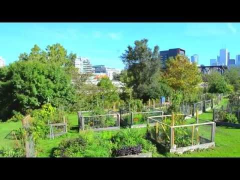 green-grants-grow-green-cities