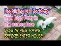 Teach Dog To Ring Bell, Train Dog Potty In One Spot, Teach Dog To Wipe Paws