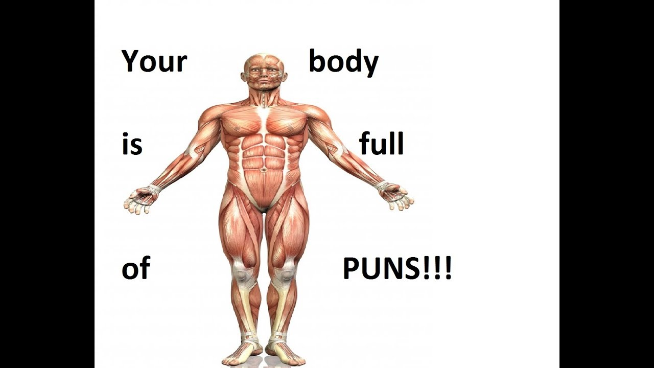 Puns Are Everywhere: The Body