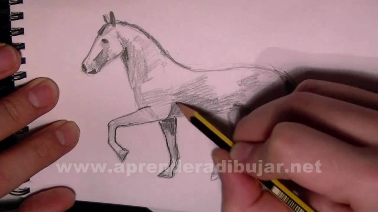 Dessin Au Crayon De Cheval Au Trot Comment Dessiner Youtube