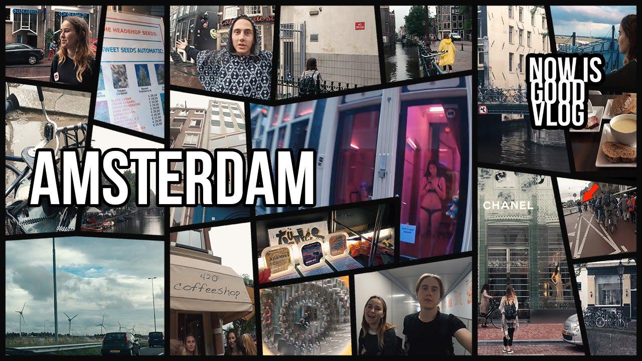 АМСТЕРДАМ, Голландия. Coffeshop 420 | опрос туристических путешествий
