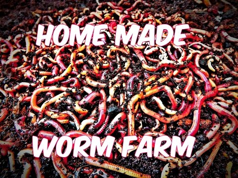 Home Made (DIY) Worm Farm: For Fishing - YouTube