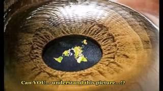 Flat Earth: Auguste Antoine Piccard