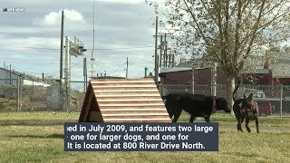 Great Falls dog park will be closed Monday morning