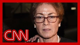 impeachment-witness-marie-yovanovitch-called-bad-news-donald-trump