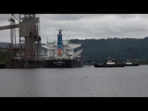 Foss Maritime Ship Assist @ Columbia Grain: 9-4-16