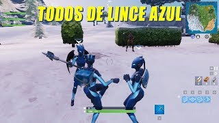 WE PLAY BLUE BOBCAT SKINS-POPCORN FORTNITE