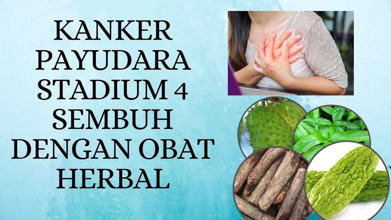 kanker payudara stadium 4 sembuh dengan obat herbal - YouTube