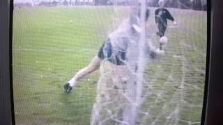 les sealey interview