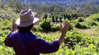 видео Проектирование садового (дачного) приусадебного участка самостоятельно