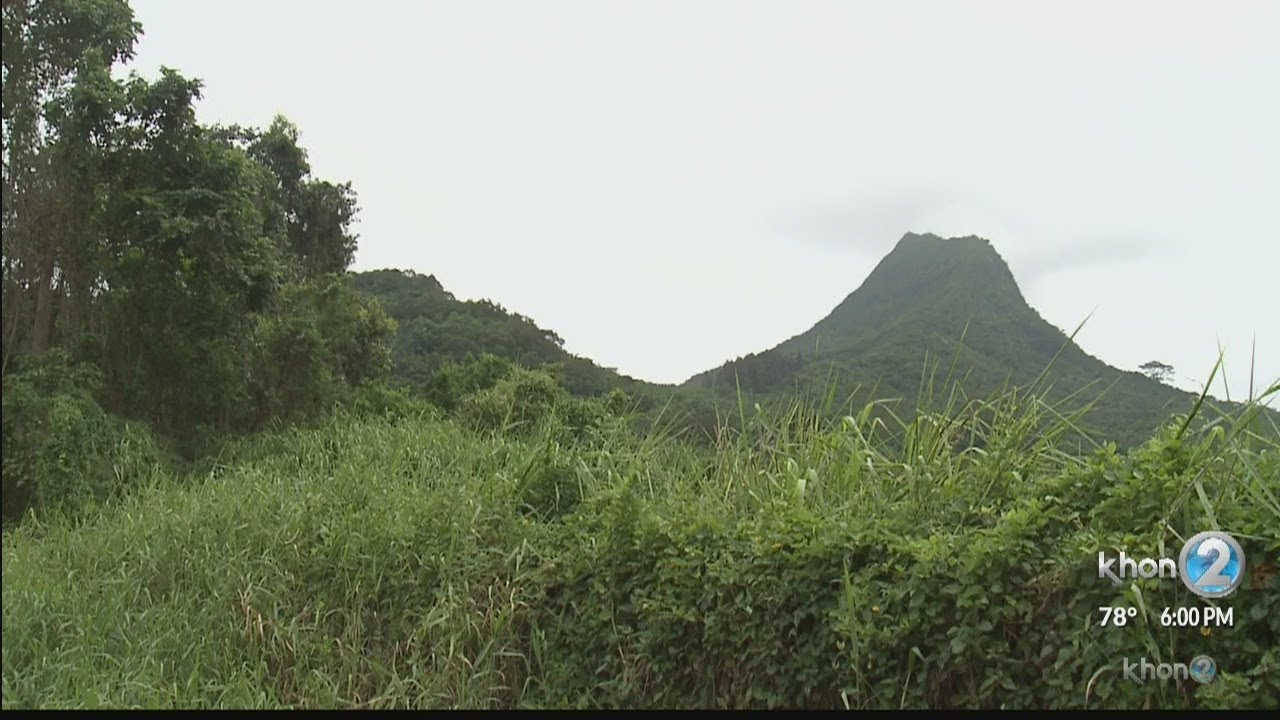 Hiker falls 400 ft  off of Olomana Trail, dies