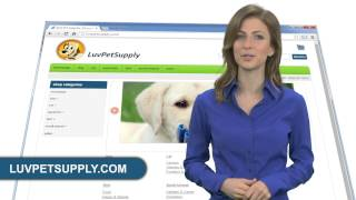 ONLINE PET STORE, DISCOUNT PET SUPPLY, PET ACCESSORIES