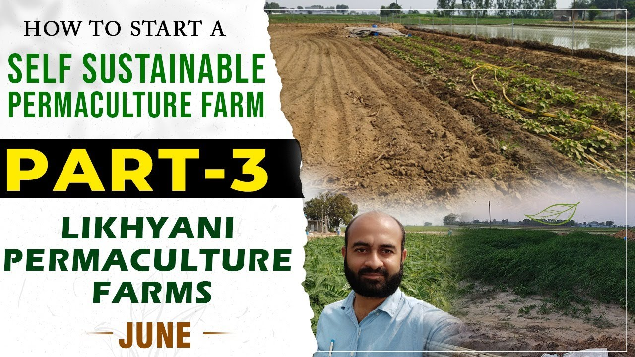 How To Start A  Self Sustainable Permaculture Farm | Likhyani Permaculture farms Update Part - 3