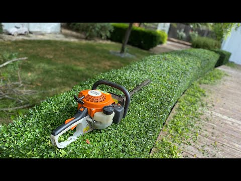Hedge Trimming With The ( Stihl HS 45 ). / How To Trim Hedges
