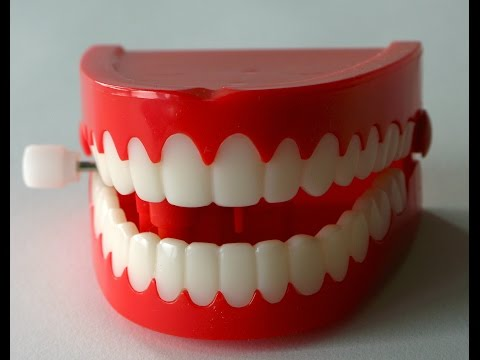 World Oral Health Day - Great tips for your oral health
