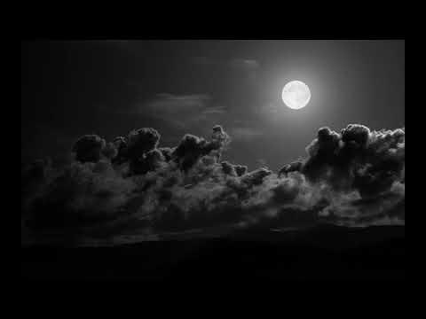 Max Richter Path 5 Delta From Sleep