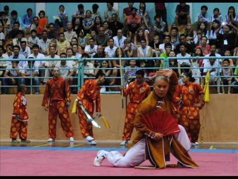Liên hoan Quốc tế võ cổ truyền Việt Nam 2010