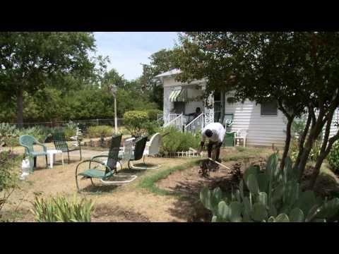 The Richest Black Neighborhood - 1sqMile Fort Worth, TX (Lake Como)