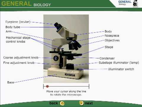 how to use Microscope,describing different Parts - YouTube