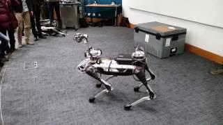 connectYoutube - Boston Dynamics SpotMini Demo at UCL