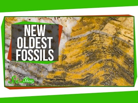 The Oldest Fossils Ever Found!