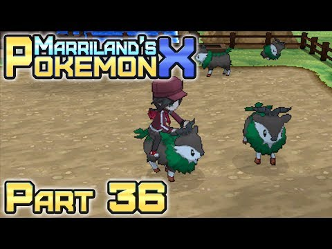 Pokémon X, Part 36: Route 12 & the Baa de Mer Ranch!