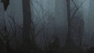 Trentemøller: While the Cold Winter Waiting