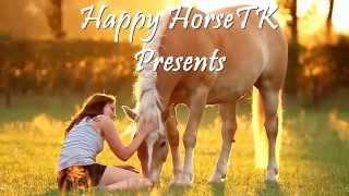 Лучшие приколы с лошадьми #1