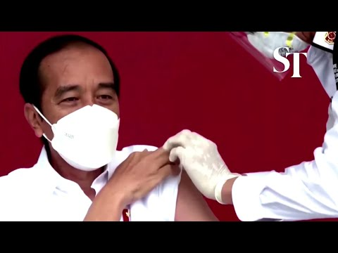 Indonesian President Joko Widodo receives Chinese vaccine thumbnail