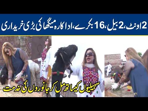 Actress Megha Gets 2 Camels, 2 Cows & 16 Goats For Eid-ul-Azha